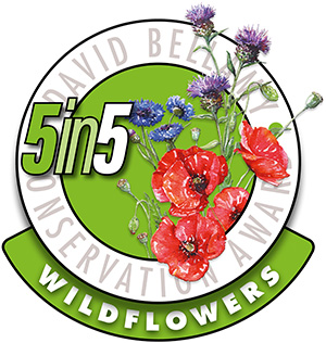 5in5wildflowers